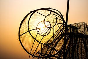 Viktige lovendringer for fiskeri- og oppdrettsnæringen